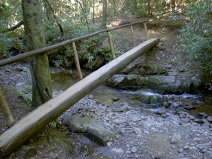 One of I think three good log footbridges on the way