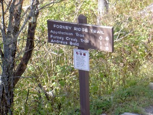 Forney Creek Cascades are down this trail, 6mi downhill, maybe next time (grin)