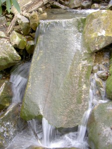 Moss-covered grooved rock on a feeder stream