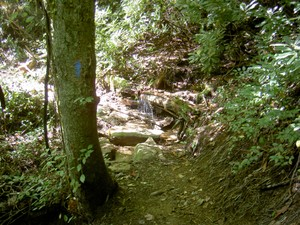 The side trail also has a spring with reliable water for AT hikers