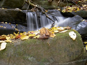 Small cascade downstream