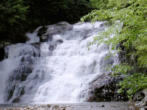 Highlight for Album: Laurel Fork Falls