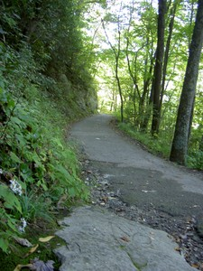 1.3mi paved trail