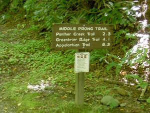 Trailhead sign for the left trail, no sign on the right trail