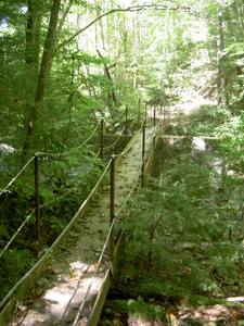 Footbridge on the right trail on the Lynn Camp Prong at the end of the Tremont Road