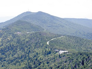 Highlight for Album: Mount Mitchell