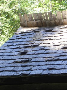 I had never seen a hornets nest built on top of a roof like this. It was active too, I avoided it