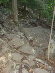 The entire trail isn't this rocky but parts are. A lot of it is also on a fairly steep hillside.
