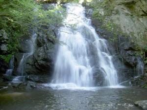 Highlight for Album: Spruce Flats Falls