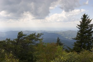 View from an overlook on Unaka Mountain