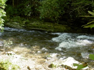 Just a section of Deep Creek upstream from the falls