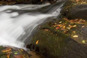 Highlight for Album: Wildcat Creek Falls