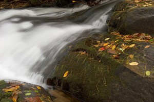 Very interesting creek, lots of neat rocks and cascades for a half mile stretch or more